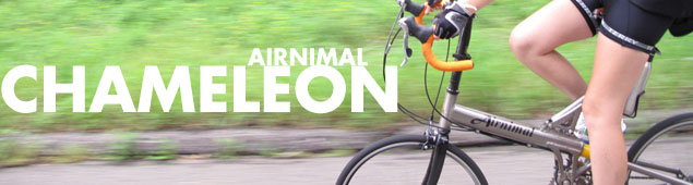 Airnimal Chameleon at Calhoun Cycle
