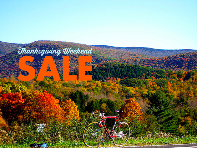 Thanksgiving Weekend Sale