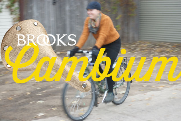 Brooks Cambium